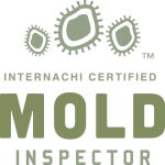 Mold Inspection Rock Hill