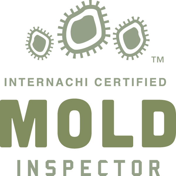 Rock Hill mold inspection near me