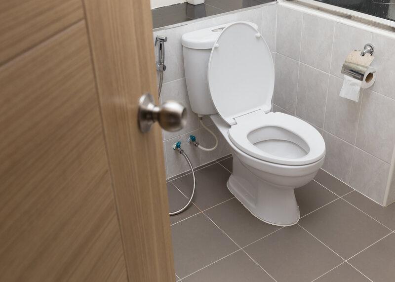 Toilet Inspection Rock Hill